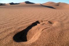Un pied dans les dunes de chegaga
